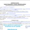 Wzór umowy najmu okazjonalnego w PDF